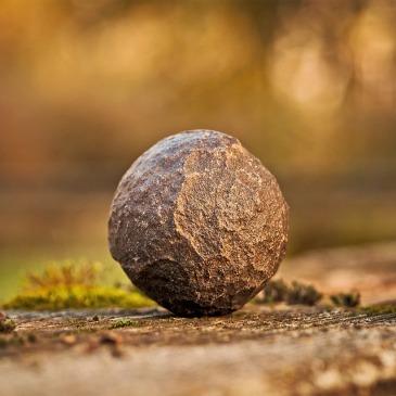 rock grounding harmony in nature